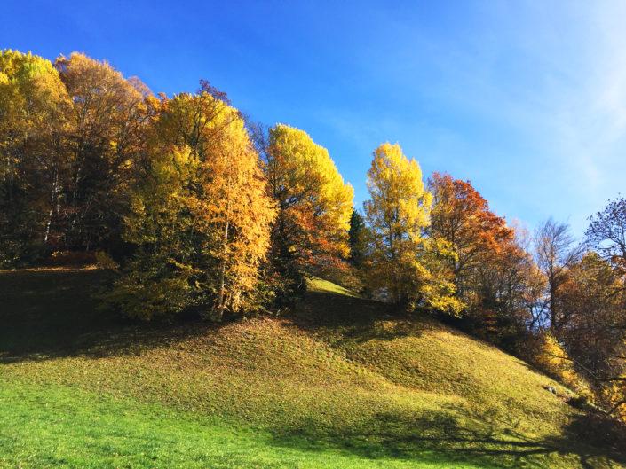 Herbststimmung am Hasliberg, Hotel Gletscherblick